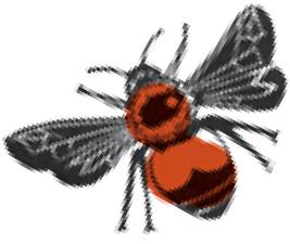 BeeImage
